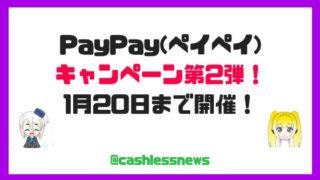 PayPay(ペイペイ)キャンペーン復活・再開!次も20%還元はある!ただし問題も・・ビックカメラが狙い目か?
